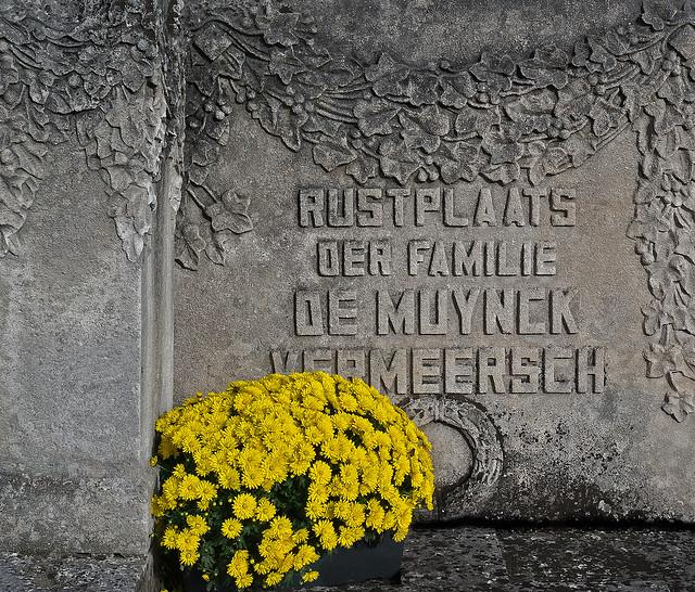 Kerkhofbloemen in Gentbrugge