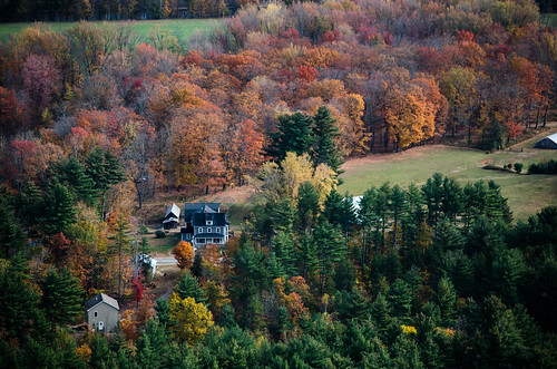nh forest woods foliage fall colors colorful vista scenic view spreading houses orange birch maple photography landscape nikon overlooking newhampshire newengland conway north autumn magnificent breathtaking