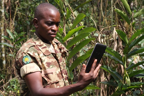 Park rangers use Forest Watcher | by World Resources