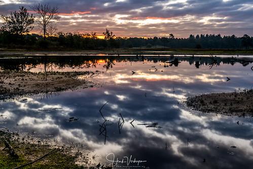 forest hatertsevennen autumn bos buiten clouds herfst landscape outdoor sunrise vennen water wolken zon zonsopkomst