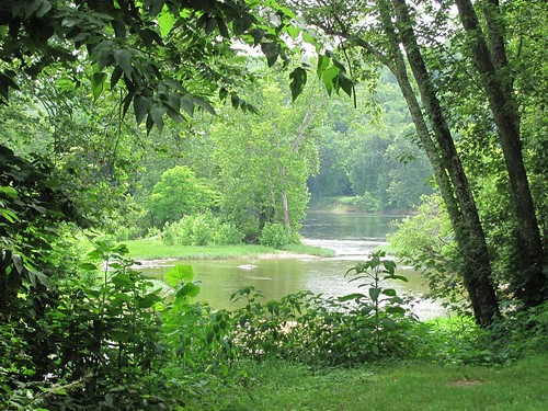 trees hot green nature water leaves creek river landscape virginia scenery view sandbar peaceful foliage frame vegetation warren trunks slant tranquil muggy placid confluence shrubbery humid jamesriver lean almostsummer boles tributary albemarlecounty ballengercreek warrenferryroad