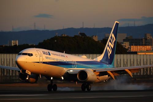 aircraft airplane jet ana allnipponairways japan airport 大阪国際空港 伊丹空港 日本 飛行機 航空機 landing 全日空 boeing737 ボーイング737 伊丹スカイパーク sunset light