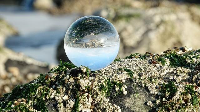 Blankenberge - Crystal Ball