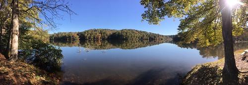 leaves autumn fall trees lake