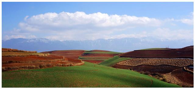 紅土地 Red Earth Terraces