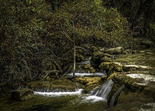 fall falls stream creek bullcreek austin texas