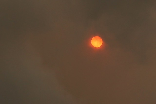 Red sun due to wildfire smoke and Saharan dust