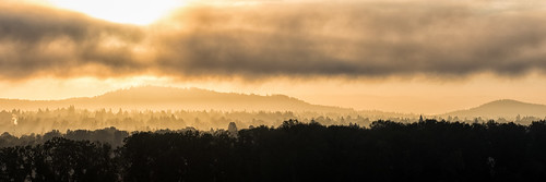 autumn fog sunrise portland clouds oregon unitedstates us