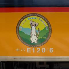 キハE120形には、飯豊山に棲むオコジョが描かれている