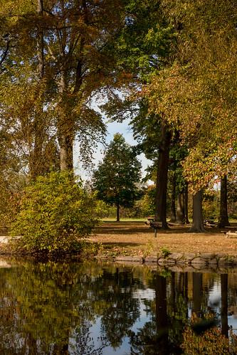 bellevuestatepark delaware pond trees wilmington autumn clearing landscape naturalframe reflection unitedstates us