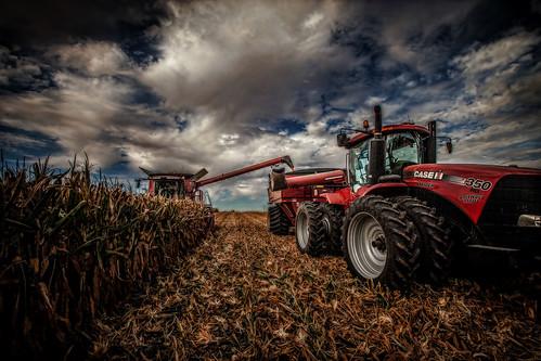 Harvest 2017 | by StevanBaird