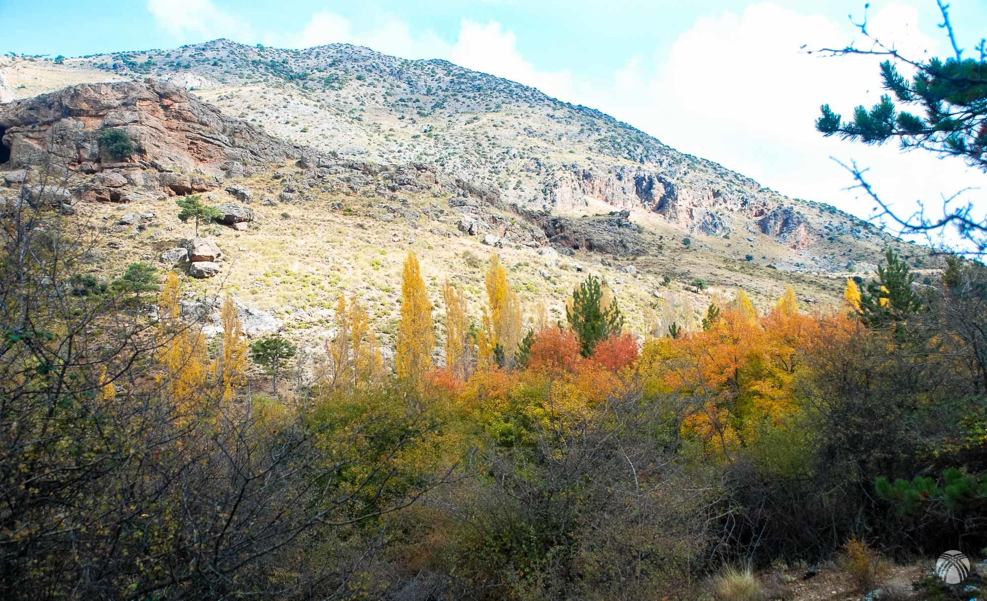 Colorido otoñal y cerro Quintana