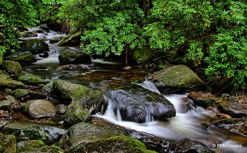 torcwaterfall trail hiking ireland killarney countykerry ringofkerry drive trees green rocks waterfall cascade slowshutter longexposure serene outdoor landscape nature canon slr eos 7d flickr