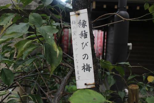 hirakawatenmangu_0040 | by jinja_gosyuin