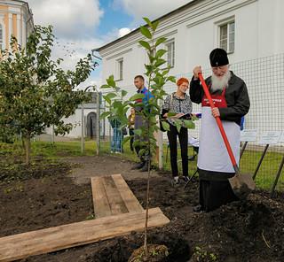 Новгородская епархия 190