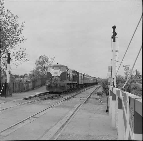 jamespo'dea o'deaphotographiccollection nationallibraryofireland longpavementrailwaystation closure 1963 dieselengine b169 limerick longpavement countylimerick moyross railcrossing barrier signal 141class longpavementstation probablecataloguecorrection explore tracks