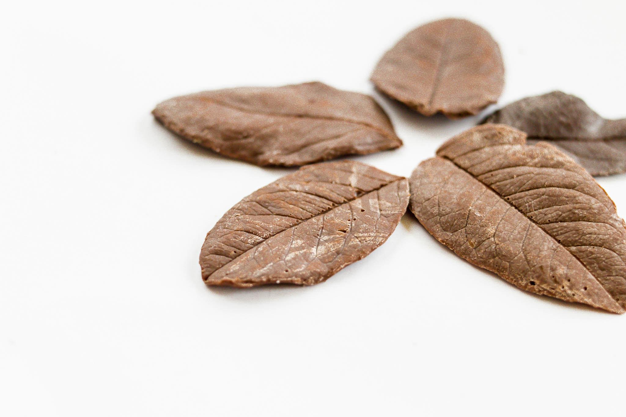 Homemade chocolate leaves