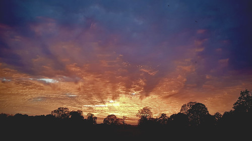 sky cloud red tree sunset norwich uea university sportspark