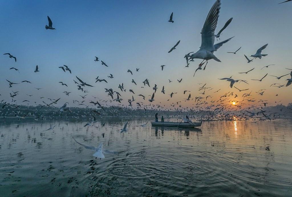 Yamuna Ghat-Delhi   Ash Kapoor Photography   Flickr