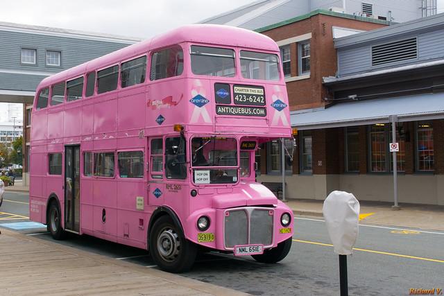 Autobus antique, Halifax,  Nouvelle-Écosse, Canada - 2893