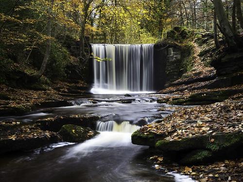 nantmill wrexham wales landscape andyholt uk nature