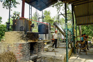 The Chisapani Community Forest User Group's essential oil distillery | by CIFOR