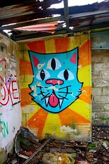Catraffiti