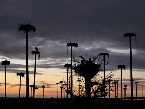 clouds cielo cáceres contraluz sunset sky extremadura infinitexposure nwn nubes