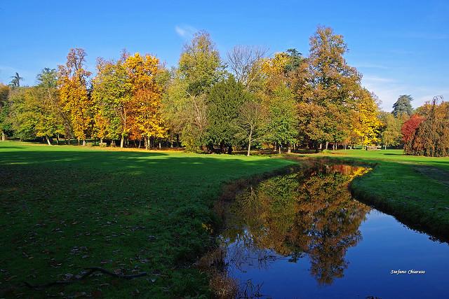 In diretta dalla Natura: l'Autunno!/Live from Nature: the Autumn!
