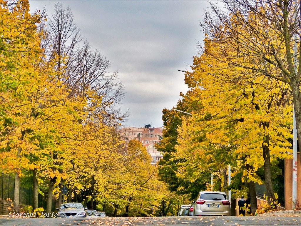 autumn in rome