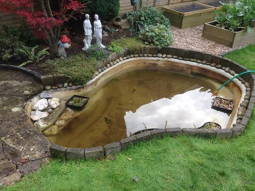 Pond clean Holbury