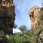 Chemin du Carciara aval