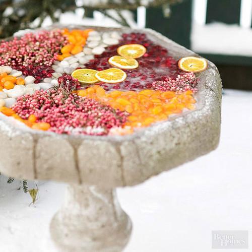 Fruit-Filled Birdbath