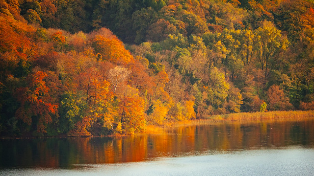 autumn_at_the_lake_III