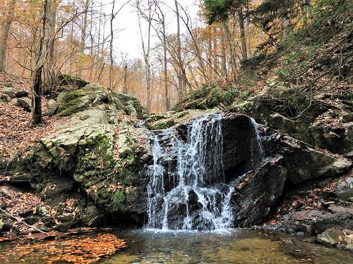 patapscosp maryland howardco mdstateparks cascadefalls woods forest trees fallcolor waterfalls cliche hcs iphone elkridge creeks topf25