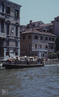 Venice dustman