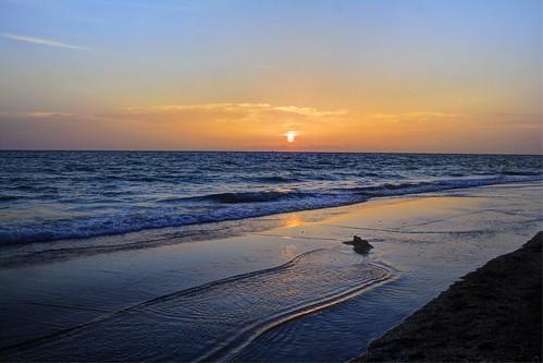 birthday sunset sun reflection beach water canon sand florida 60d