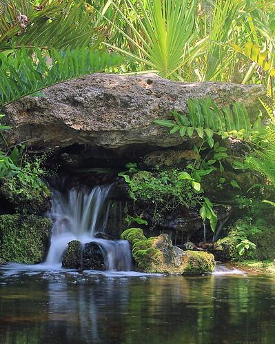 garden landscape waterfalls waterscape waterinmotion mckeebotanicalgardens verobeachfl kmprestonphotography mckeebotanicalimg8790