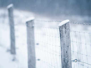 Winter fence - HFF! | by A_Peach