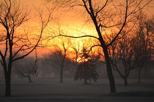 sun sunrise morning lockportny niagaracountyny nikond5200 trees autumn landscapes nature westernnewyork