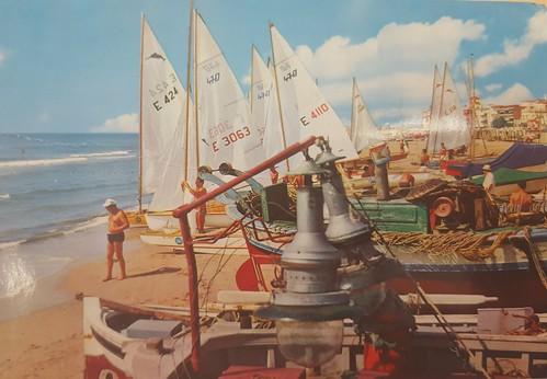 Patins enmig de barques de pescadors