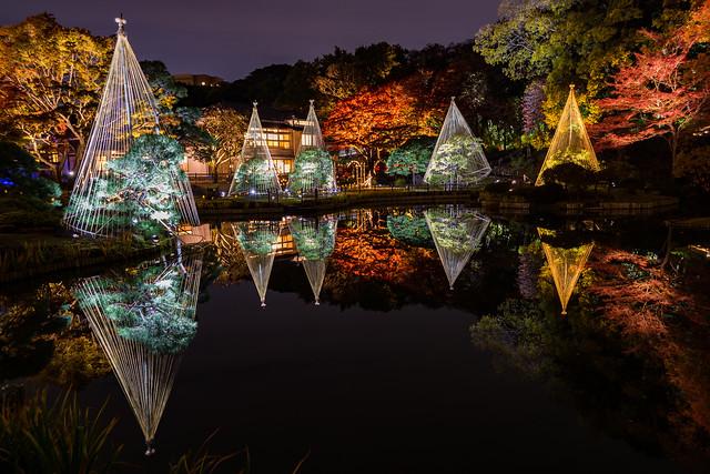 Higo-Hosokawa Garden at Night