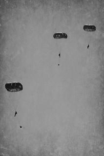 Falling Feels Like Flying