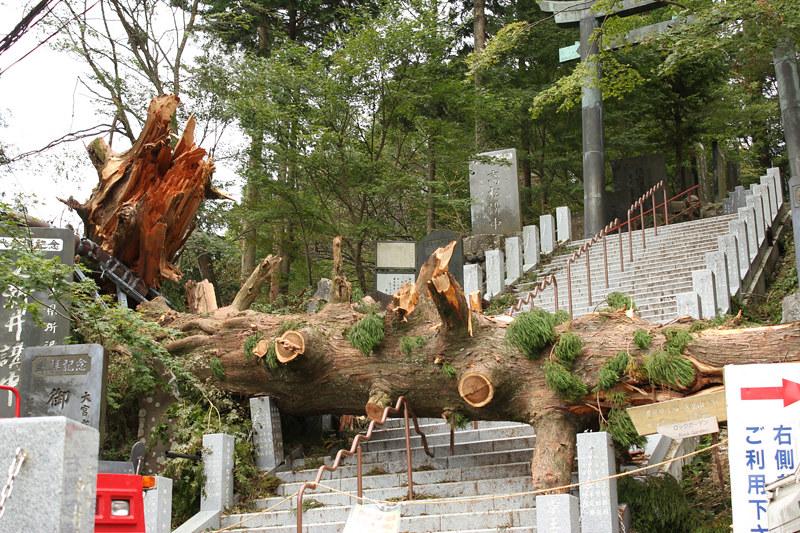 20111001_大岳山_0019