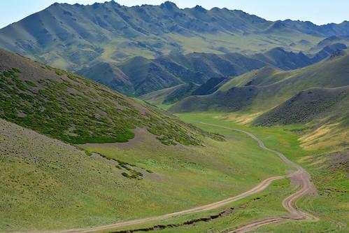 mongolia gobi desierto desert oasis paisaje landscape