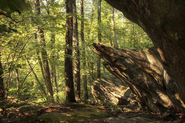 Appalachian Trail - Shenandoah National Park (Virginia)