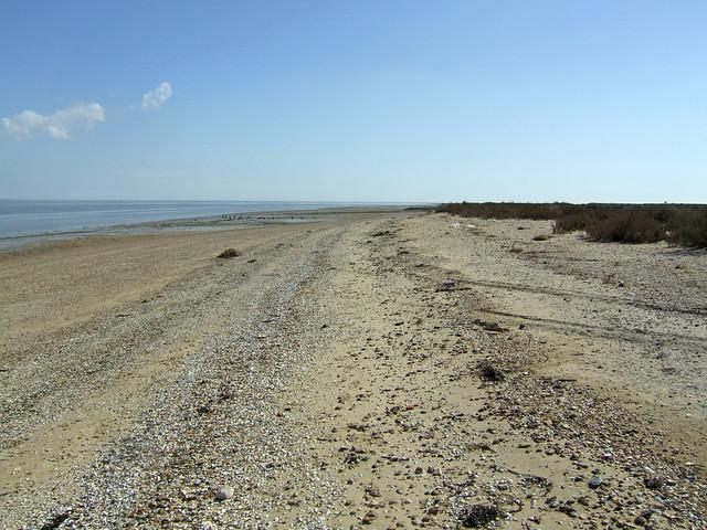 The coast near Bradwell