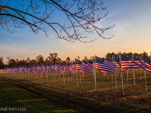 flags hermitage olympusomd tennessee nashville unitedstates us