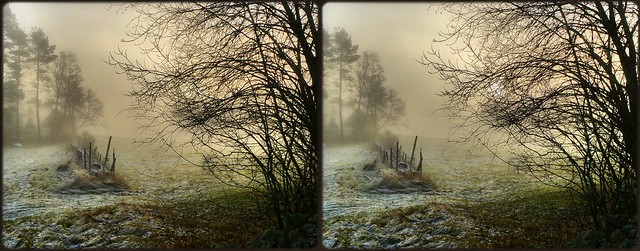 ... a magical winter morning ...