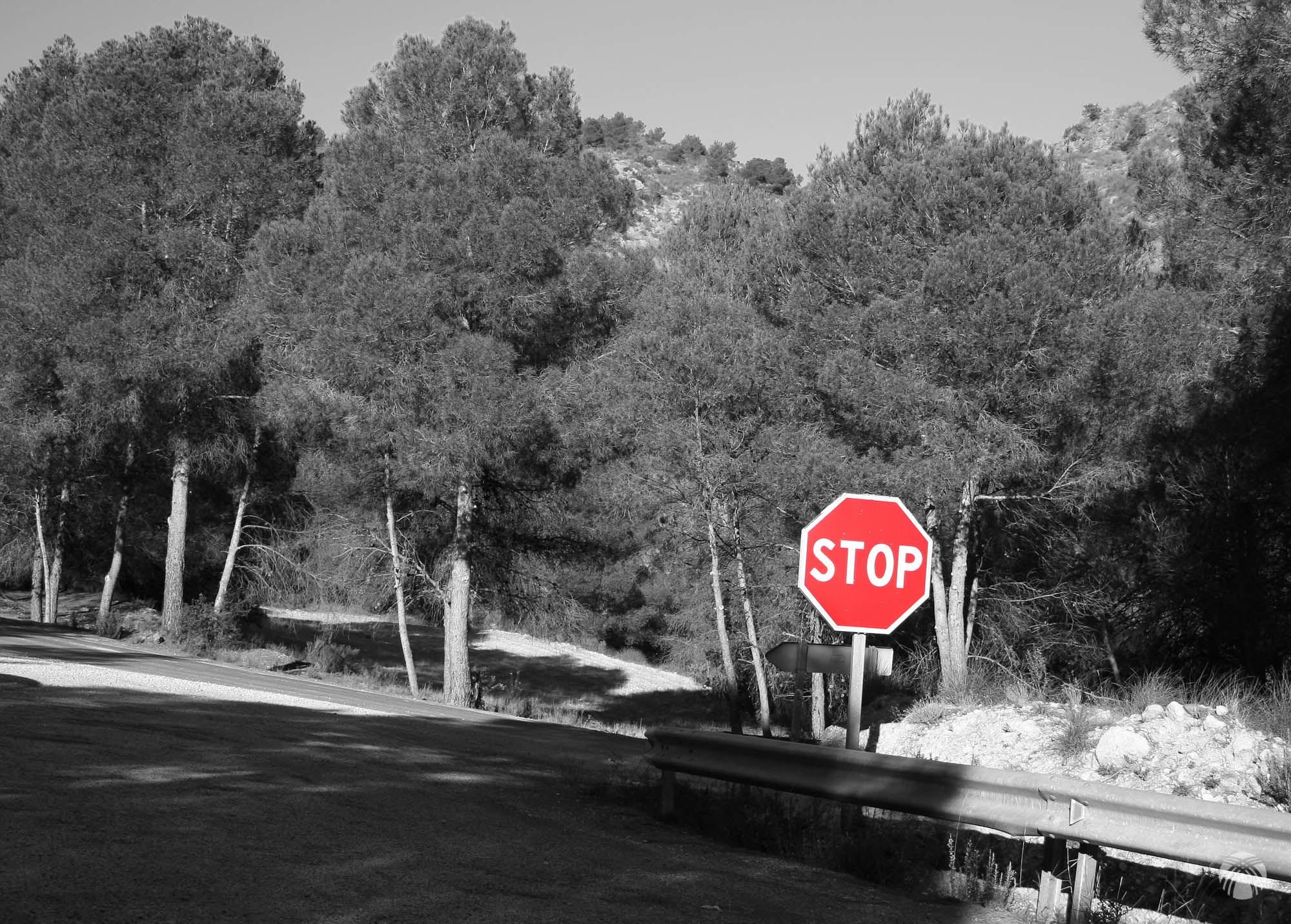 Cruce de la carretera